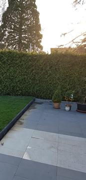 Platten für neue Terrasse im Garten.